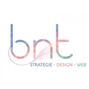 BNT Consulting